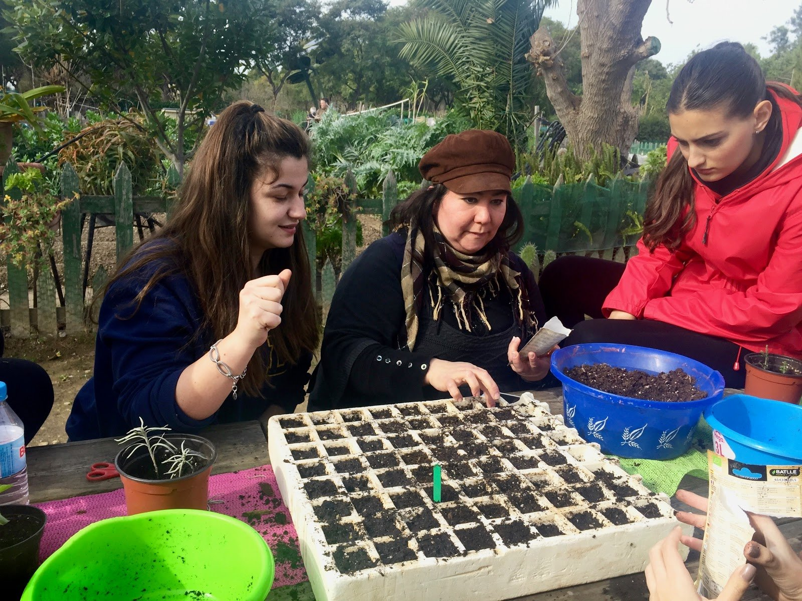 Women begin growing seedlings for community garden